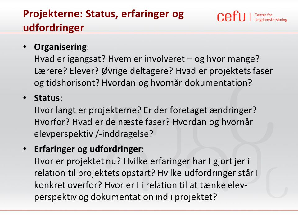 Projekterne: Status, erfaringer og udfordringer • Organisering: Hvad er igangsat? Hvem er involveret – og hvor mange? Lærere? Elever? Øvrige deltagere