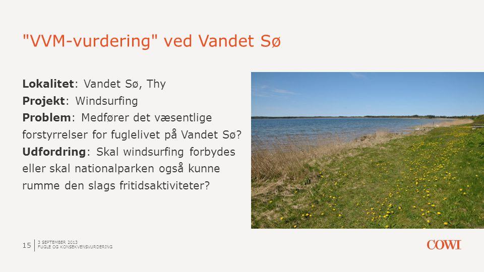 VVM-vurdering ved Vandet Sø 3 SEPTEMBER 2013 FUGLE OG KONSEKVENSVURDERING 15 Lokalitet: Vandet Sø, Thy Projekt: Windsurfing Problem: Medfører det væsentlige forstyrrelser for fuglelivet på Vandet Sø.