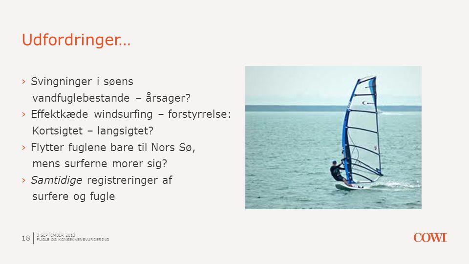 Udfordringer… 3 SEPTEMBER 2013 FUGLE OG KONSEKVENSVURDERING 18 ›Svingninger i søens vandfuglebestande – årsager? ›Effektkæde windsurfing – forstyrrels