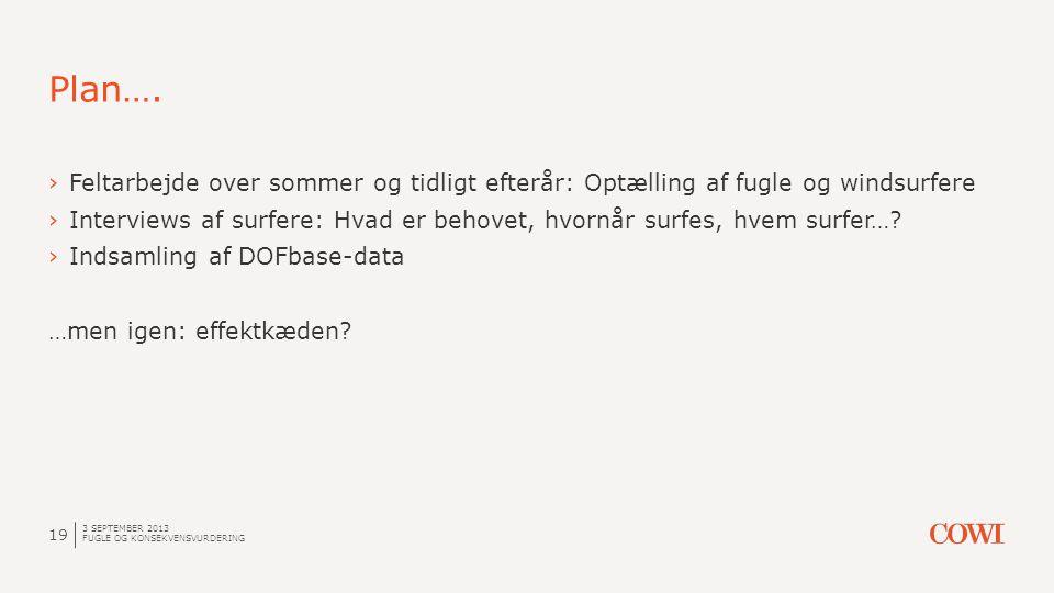Plan…. 3 SEPTEMBER 2013 FUGLE OG KONSEKVENSVURDERING 19 ›Feltarbejde over sommer og tidligt efterår: Optælling af fugle og windsurfere ›Interviews af