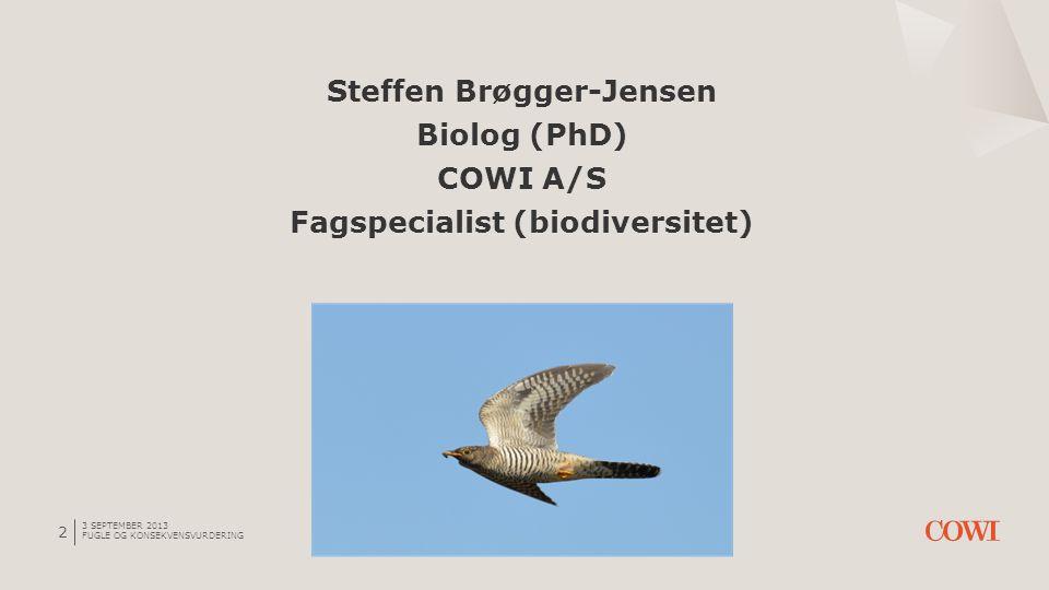 Generel beskyttelse af fugle 3 SEPTEMBER 2013 FUGLE OG KONSEKVENSVURDERING 23 Art.