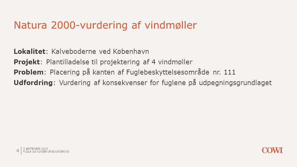 Natura 2000-vurdering af vindmøller 3 SEPTEMBER 2013 FUGLE OG KONSEKVENSVURDERING 4 Lokalitet: Kalveboderne ved København Projekt: Plantilladelse til