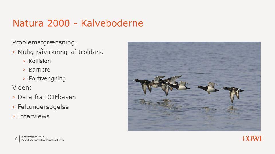 Natura 2000 - Kalveboderne 3 SEPTEMBER 2013 FUGLE OG KONSEKVENSVURDERING 7 … men så begyndte problemerne: ›Der er hele 4 forskellige lokalitetsafgrænsninger på DOFbasen ›Der er markant færre troldænder nu end ved udpegningen ›…og hvor er det lige inden for fuglebeskyttelsesområdet, ænderne findes?
