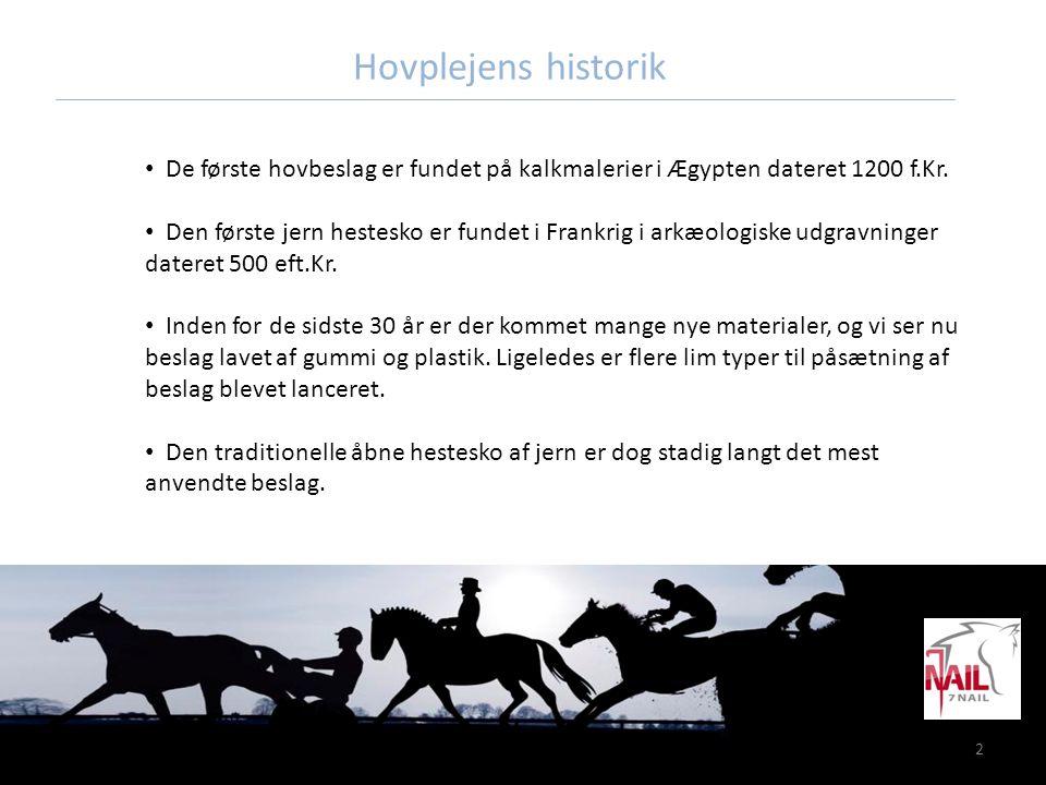2 Hovplejens historik • De første hovbeslag er fundet på kalkmalerier i Ægypten dateret 1200 f.Kr. • Den første jern hestesko er fundet i Frankrig i a