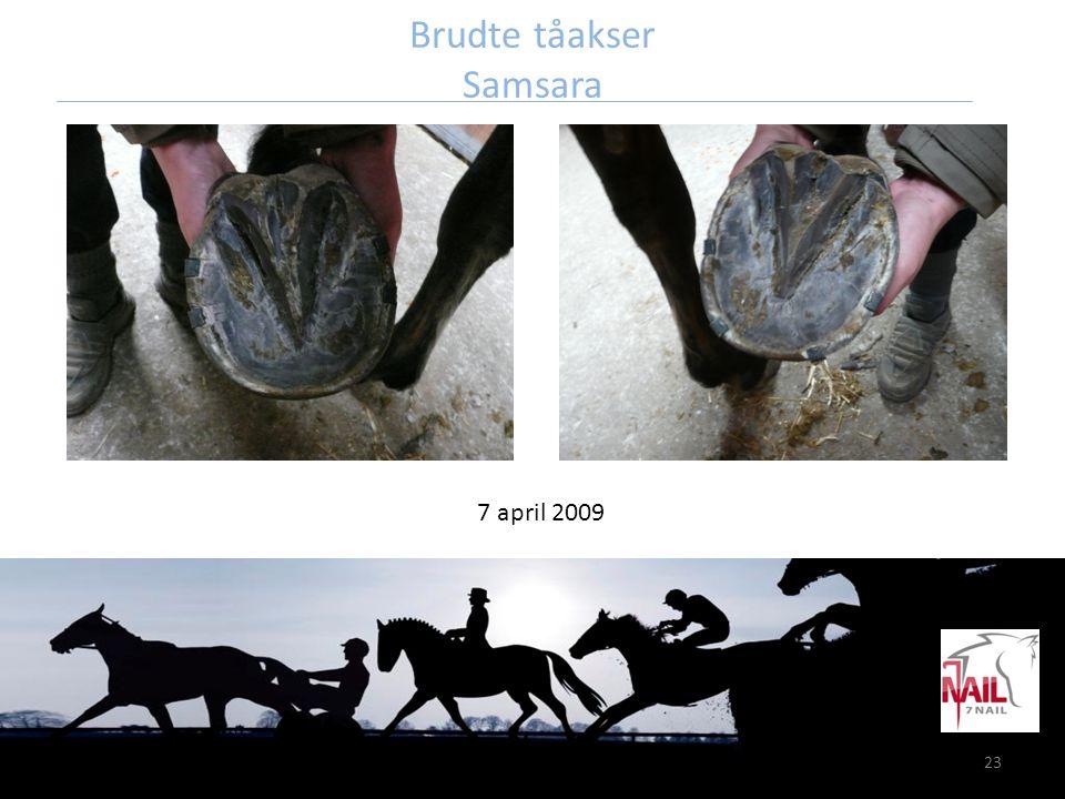 23 Brudte tåakser Samsara 7 april 2009