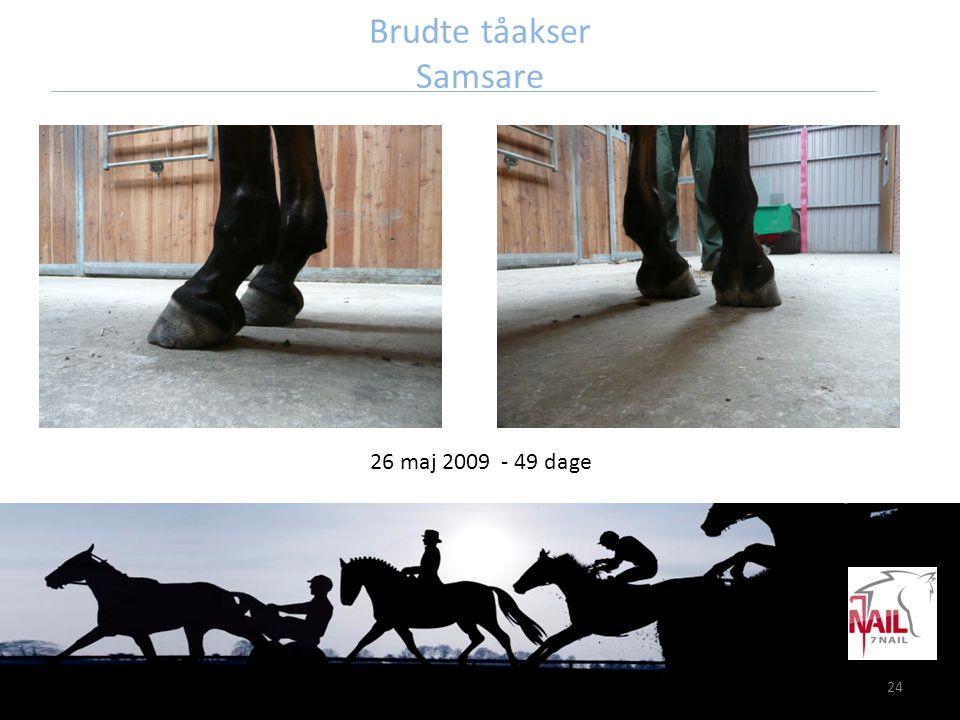 24 Brudte tåakser Samsare 26 maj 2009 - 49 dage