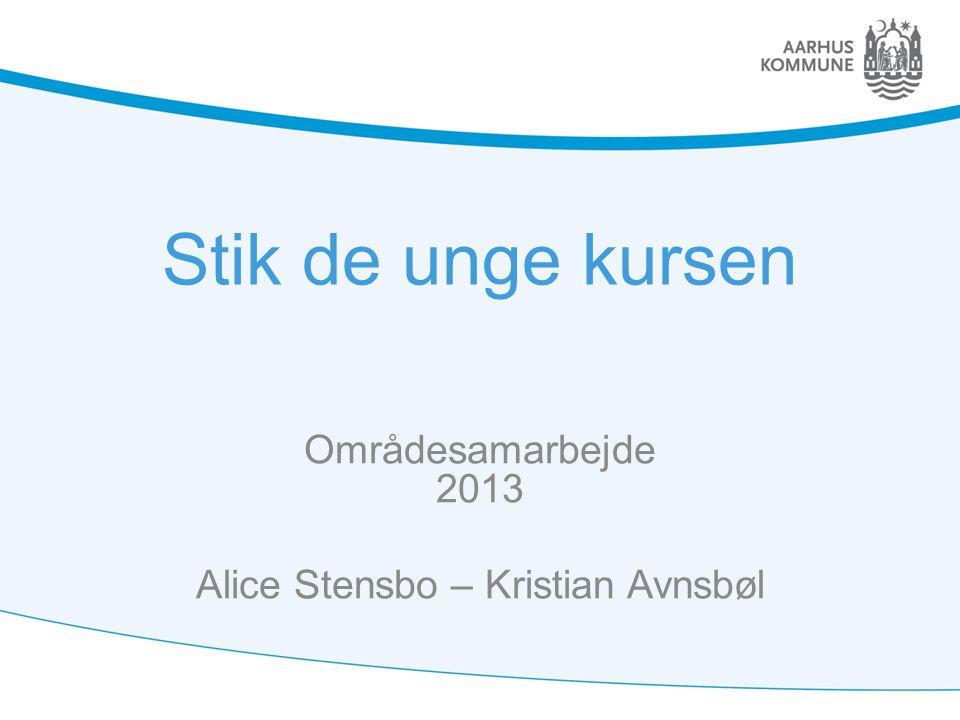 Stik de unge kursen Områdesamarbejde 2013 Alice Stensbo – Kristian Avnsbøl