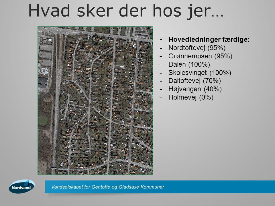 Hvad sker der hos jer… •Stikledninger færdige: -Nordtoftevej (60%) -Grønnemosen (95%) -Dalen (0%) -Skolesvinget (100%) -Daltoftevej (10%) -Højvangen (20%) -Holmevej (0%)
