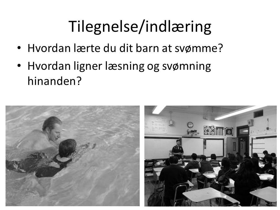 Tilegnelse/indlæring • Hvordan lærte du dit barn at svømme? • Hvordan ligner læsning og svømning hinanden?