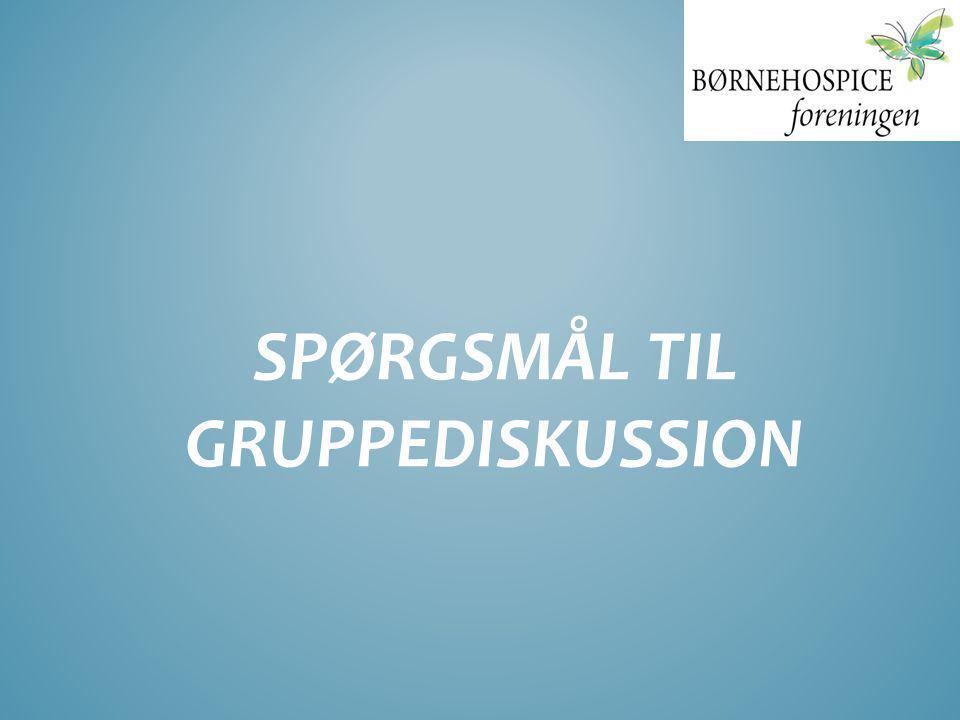 SPØRGSMÅL TIL GRUPPEDISKUSSION