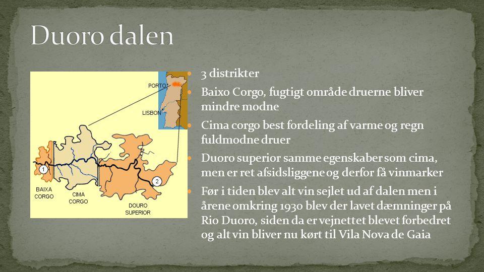  3 distrikter  Baixo Corgo, fugtigt område druerne bliver mindre modne  Cima corgo best fordeling af varme og regn fuldmodne druer  Duoro superior samme egenskaber som cima, men er ret afsidsliggene og derfor få vinmarker  Før i tiden blev alt vin sejlet ud af dalen men i årene omkring 1930 blev der lavet dæmninger på Rio Duoro, siden da er vejnettet blevet forbedret og alt vin bliver nu kørt til Vila Nova de Gaia