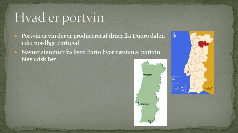  Portvin er vin der er produceret af druer fra Duoro dalen i det nordlige Portugal  Navnet stammer fra byen Porto hvor næsten al portvin blev udskibet  Indtil 1986 var der en lov om alt portvin skulle lagres i Vila Nova de Gaia, siden da kan portvin eksporteres direkte fra dalen.