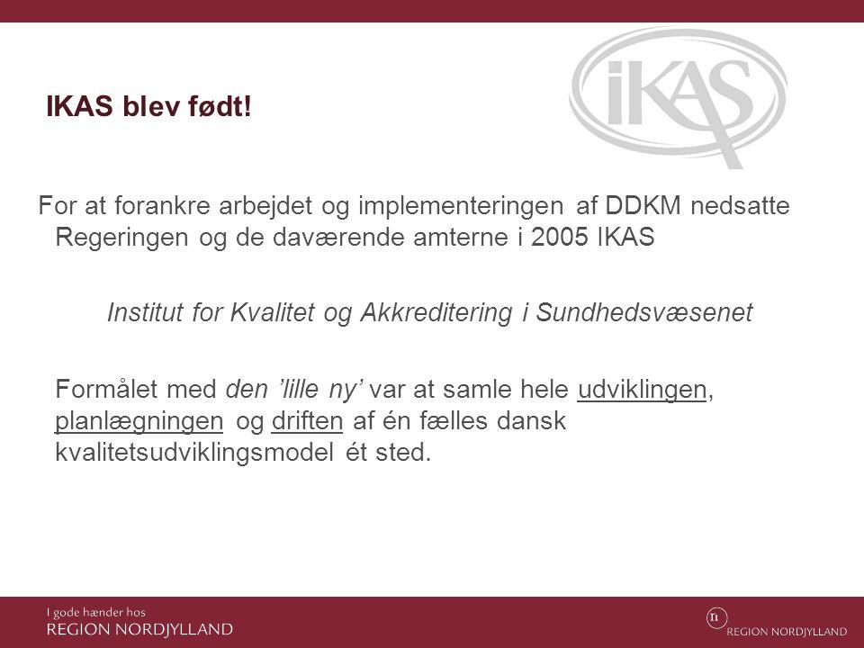 IKAS blev født! For at forankre arbejdet og implementeringen af DDKM nedsatte Regeringen og de daværende amterne i 2005 IKAS Institut for Kvalitet og