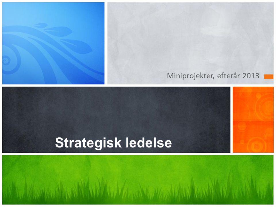 Miniprojekter, efterår 2013 Strategisk ledelse
