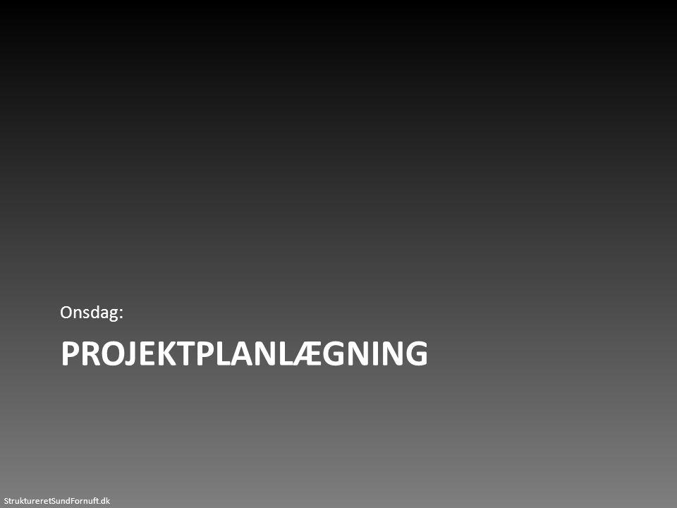 StruktureretSundFornuft.dk PROJEKTPLANLÆGNING Onsdag: