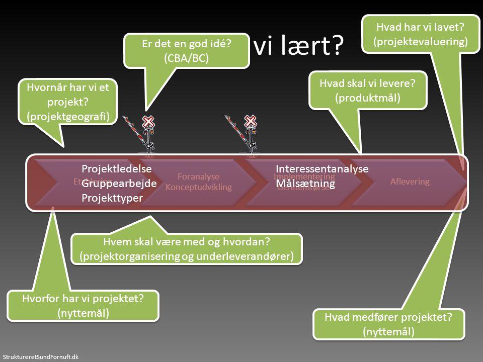 StruktureretSundFornuft.dk Hvad har vi lavet? (projektevaluering) Hvad har vi lavet? (projektevaluering) Hvad har vi lært? Etablering Foranalyse Konce