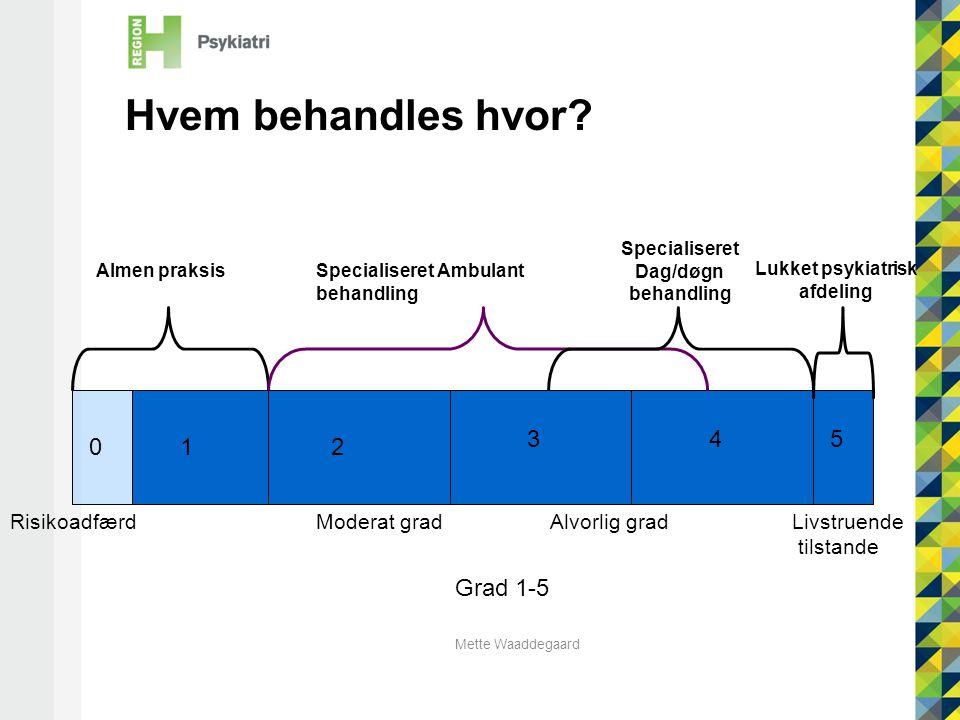 Mette Waaddegaard RisikoadfærdLivstruende tilstande 12 345 0 Hvem behandles hvor.