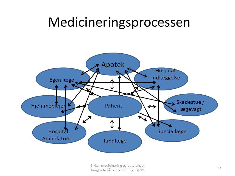 Medicineringsprocessen Sikker medicinering og datafangst langt ude på landet 13.