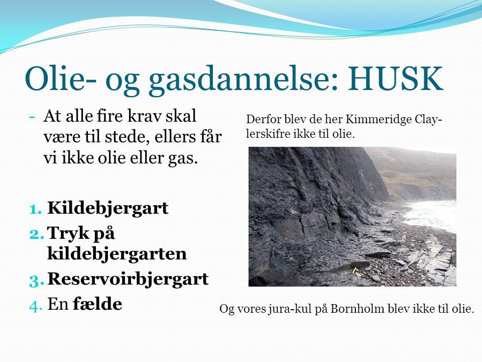 Olie- og gasdannelse: HUSK - At alle fire krav skal være til stede, ellers får vi ikke olie eller gas. 1. Kildebjergart 2. Tryk på kildebjergarten 3.