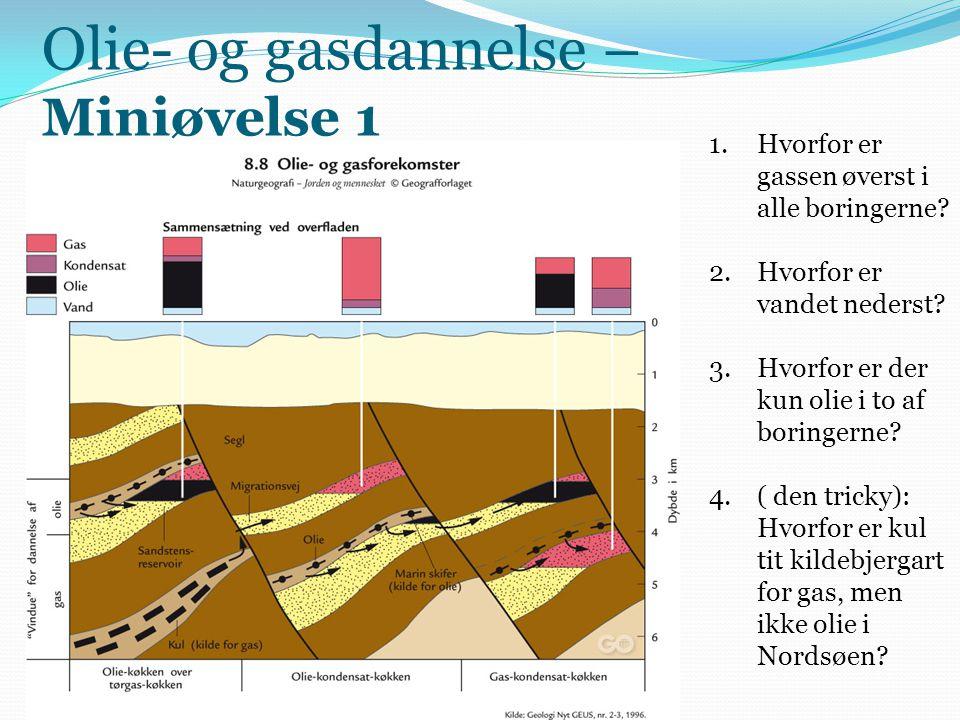 Olie- og gasdannelse – Miniøvelse 1 1.Hvorfor er gassen øverst i alle boringerne? 2.Hvorfor er vandet nederst? 3.Hvorfor er der kun olie i to af borin