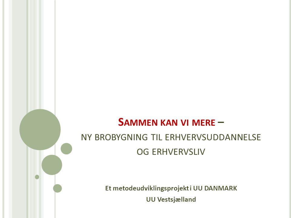 S AMMEN KAN VI MERE – NY BROBYGNING TIL ERHVERVSUDDANNELSE OG ERHVERVSLIV Et metodeudviklingsprojekt i UU DANMARK UU Vestsjælland