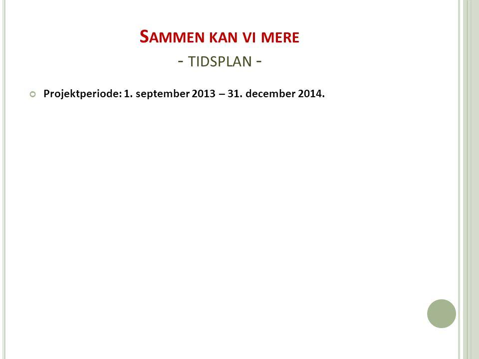 S AMMEN KAN VI MERE - TIDSPLAN - Projektperiode: 1. september 2013 – 31. december 2014.
