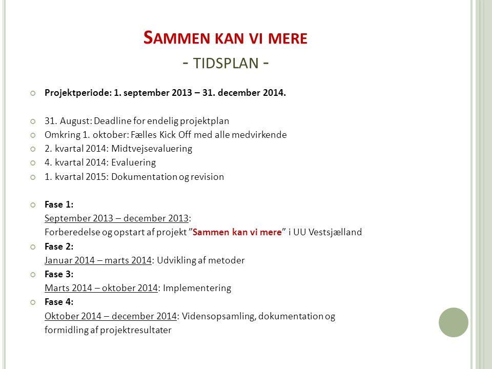 S AMMEN KAN VI MERE - TIDSPLAN - Projektperiode: 1.