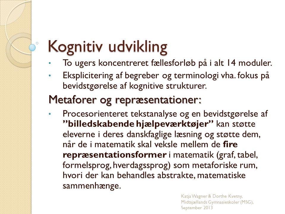 Tekstlæsning og kognitive billedskemaer Danskfaglige termer:Kognitive termer:  Miljøbeskrivelse- Scenarie.
