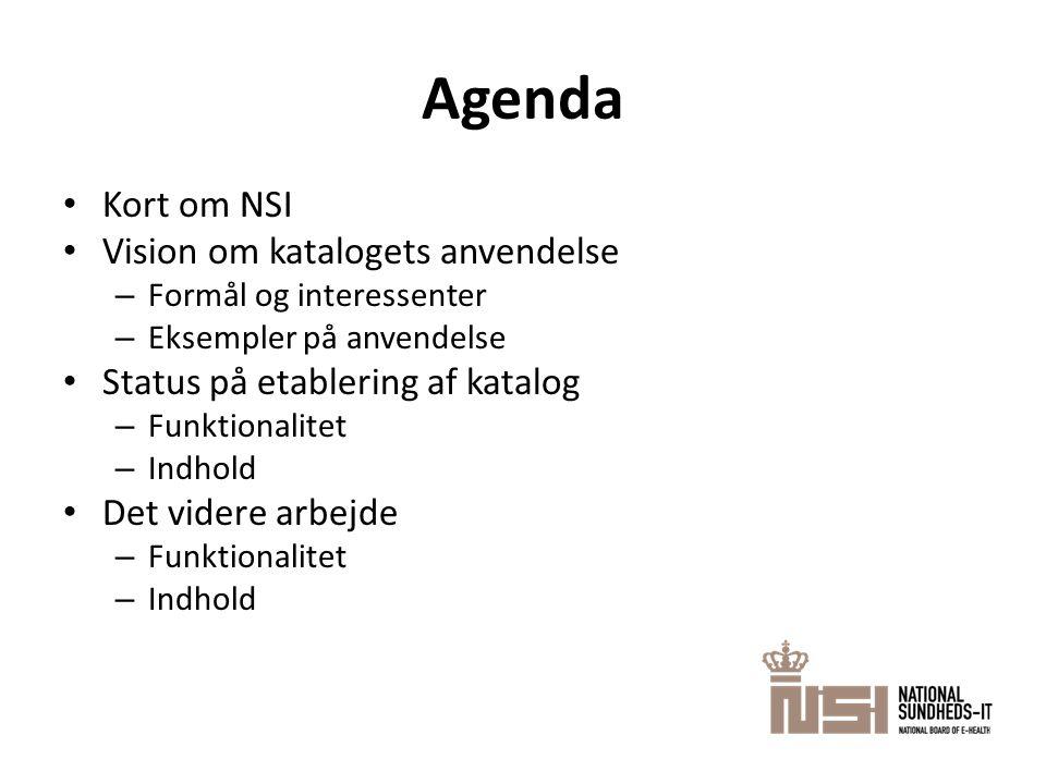 Agenda • Kort om NSI • Vision om katalogets anvendelse – Formål og interessenter – Eksempler på anvendelse • Status på etablering af katalog – Funktionalitet – Indhold • Det videre arbejde – Funktionalitet – Indhold