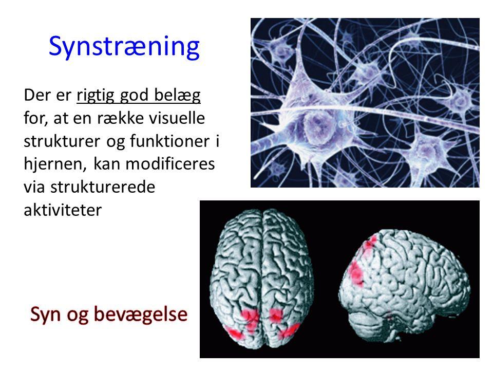 Synstræning Der er rigtig god belæg for, at en række visuelle strukturer og funktioner i hjernen, kan modificeres via strukturerede aktiviteter
