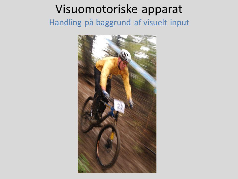 Visuomotoriske apparat Handling på baggrund af visuelt input