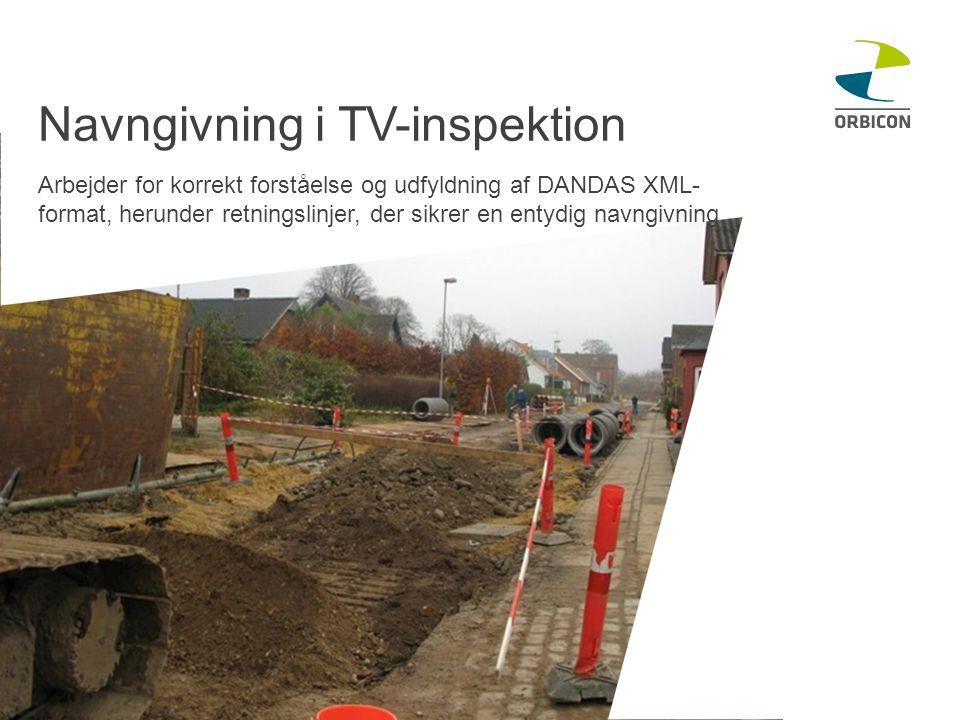 Navngivning i TV-inspektion Arbejder for korrekt forståelse og udfyldning af DANDAS XML- format, herunder retningslinjer, der sikrer en entydig navngivning