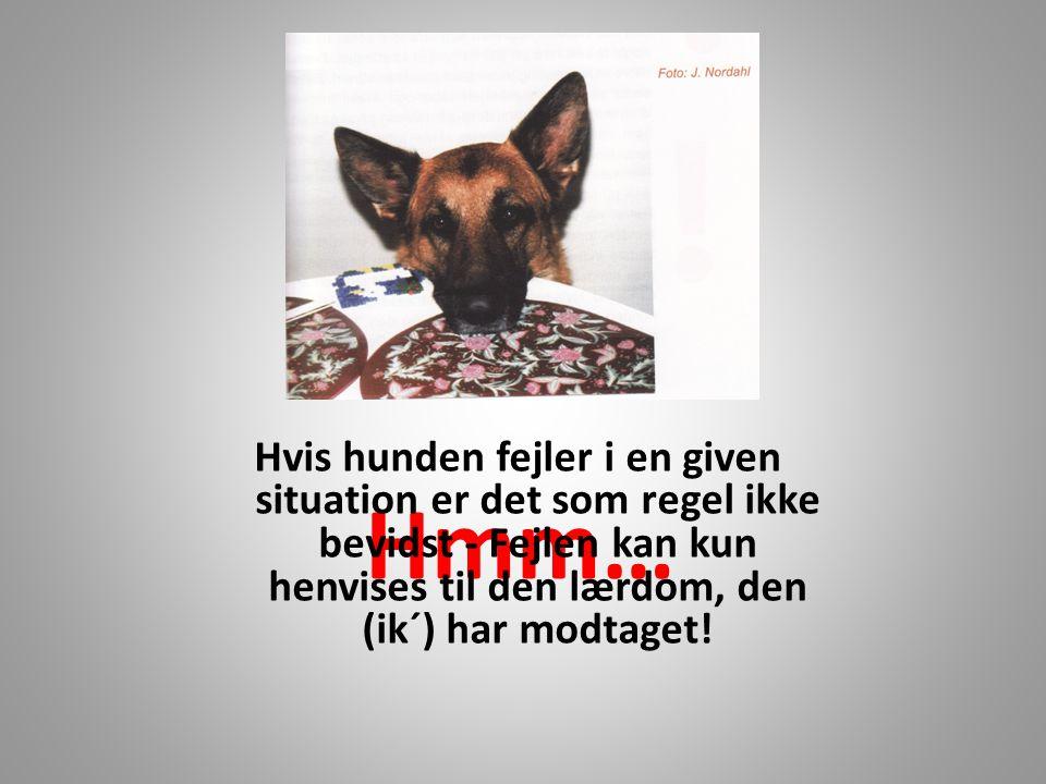 Hmm… Hvis hunden fejler i en given situation er det som regel ikke bevidst - Fejlen kan kun henvises til den lærdom, den (ik´) har modtaget!