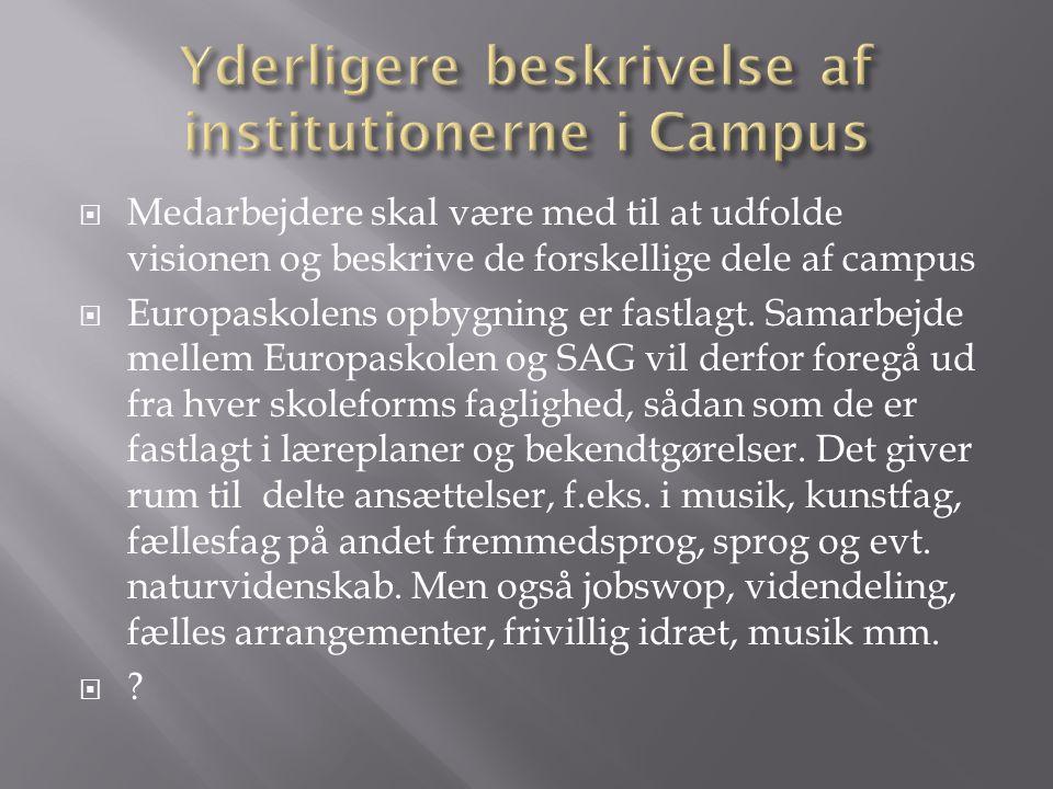  Medarbejdere skal være med til at udfolde visionen og beskrive de forskellige dele af campus  Europaskolens opbygning er fastlagt.