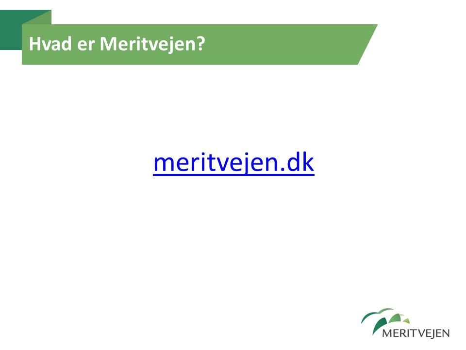 Hvad er Meritvejen? meritvejen.dk