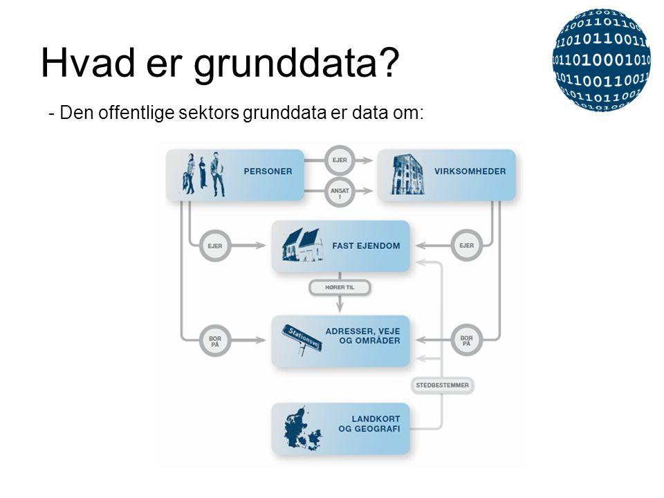Hvad er grunddata? - Den offentlige sektors grunddata er data om: