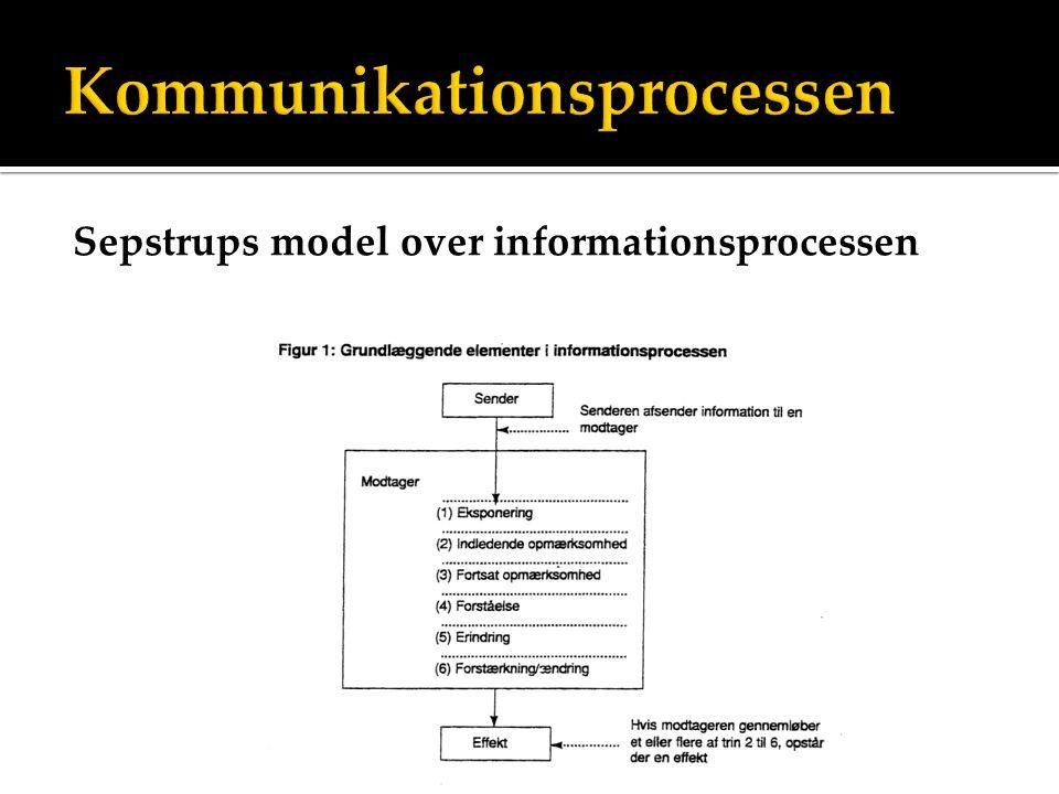 Sepstrups model over informationsprocessen