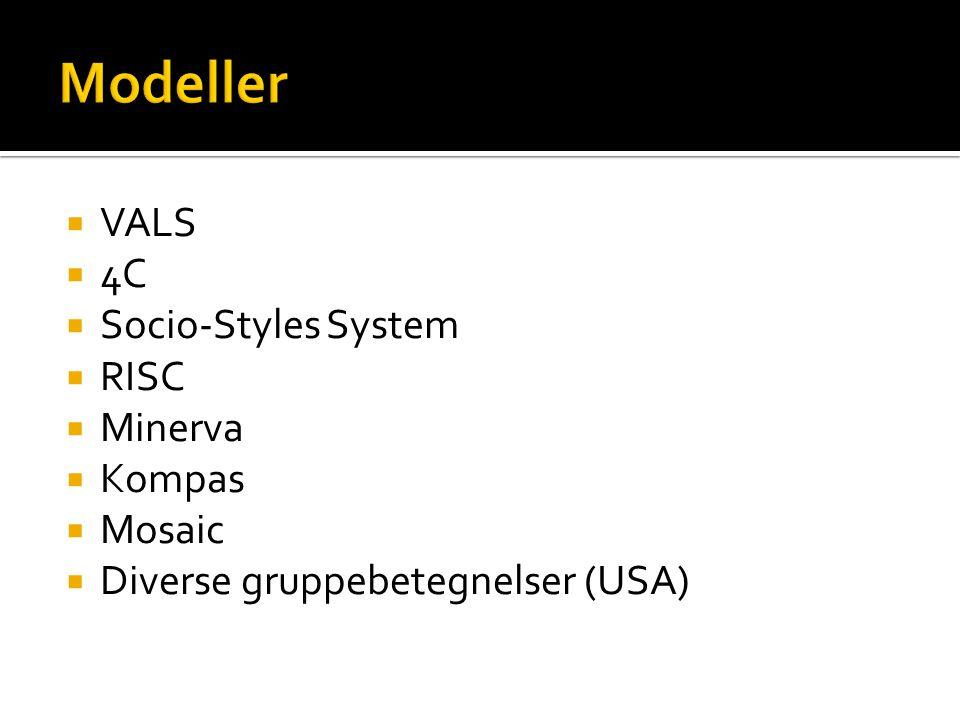  VALS  4C  Socio-Styles System  RISC  Minerva  Kompas  Mosaic  Diverse gruppebetegnelser (USA)