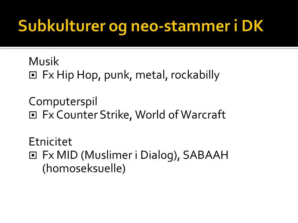 Musik  Fx Hip Hop, punk, metal, rockabilly Computerspil  Fx Counter Strike, World of Warcraft Etnicitet  Fx MID (Muslimer i Dialog), SABAAH (homose