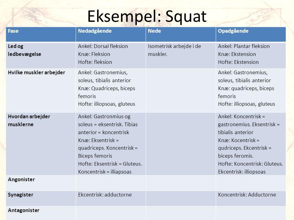 Eksempel: Squat FaseNedadgåendeNedeOpadgående Led og ledbevægelse Ankel: Dorsal fleksion Knæ: Fleksion Hofte: fleksion Isometrisk arbejde i de muskler.
