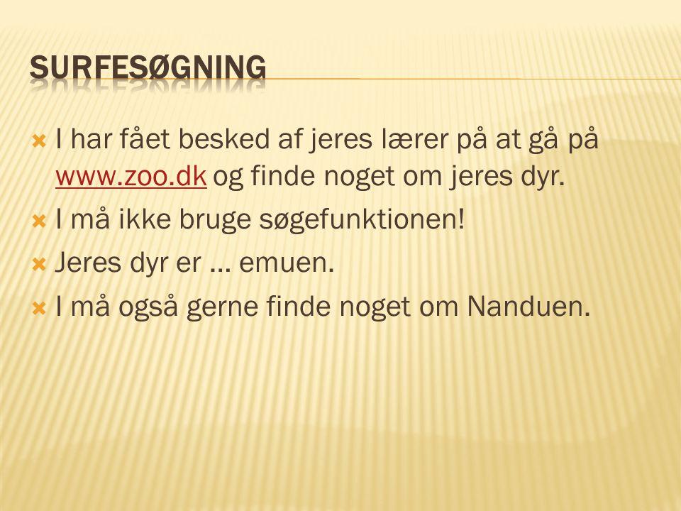  I har fået besked af jeres lærer på at gå på www.zoo.dk og finde noget om jeres dyr.