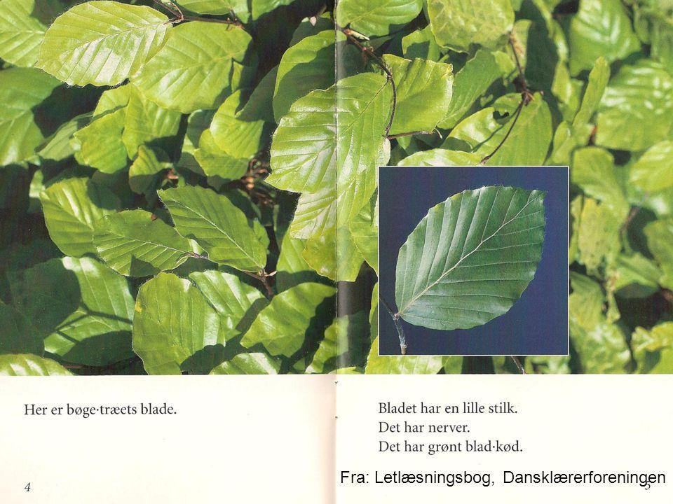 Fra: Letlæsningsbog, Dansklærerforeningen