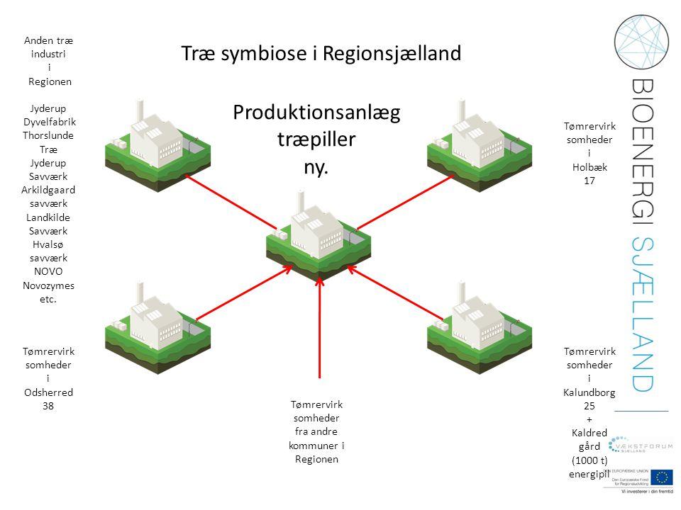 Træ symbiose i Regionsjælland Tømrervirk somheder i Kalundborg 25 + Kaldred gård (1000 t) energipil Tømrervirk somheder i Odsherred 38 Tømrervirk somh
