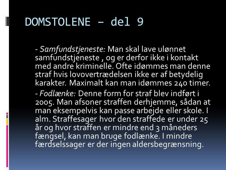 DOMSTOLENE – del 9 - Samfundstjeneste: Man skal lave ulønnet samfundstjeneste, og er derfor ikke i kontakt med andre kriminelle. Ofte idømmes man denn