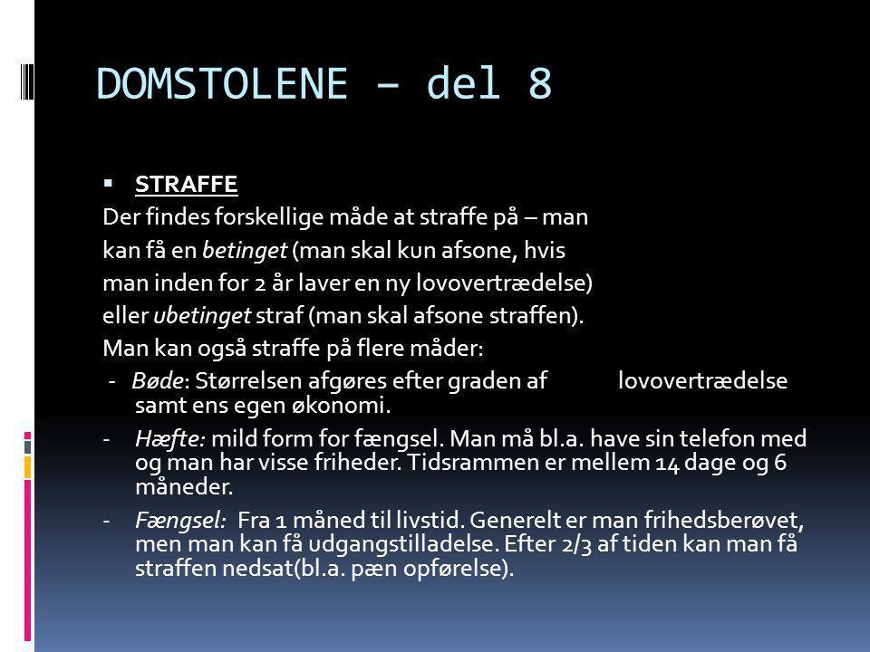 DOMSTOLENE – del 9 - Samfundstjeneste: Man skal lave ulønnet samfundstjeneste, og er derfor ikke i kontakt med andre kriminelle.