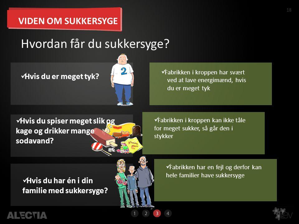 18 Hvordan får du sukkersyge?  Fabrikken i kroppen kan ikke tåle for meget sukker, så går den i stykker 18  Fabrikken i kroppen har svært ved at lav