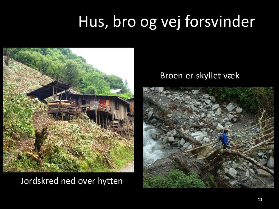 Hus, bro og vej forsvinder Broen er skyllet væk Jordskred ned over hytten 11
