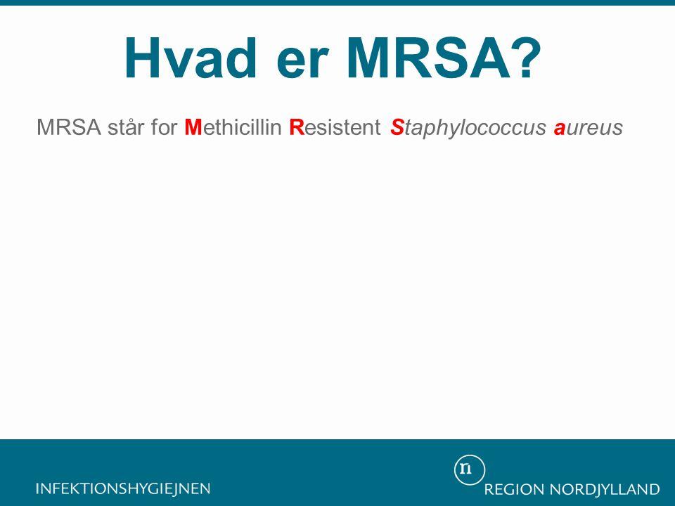 MRSA står for Methicillin Resistent Staphylococcus aureus Hvad er MRSA?