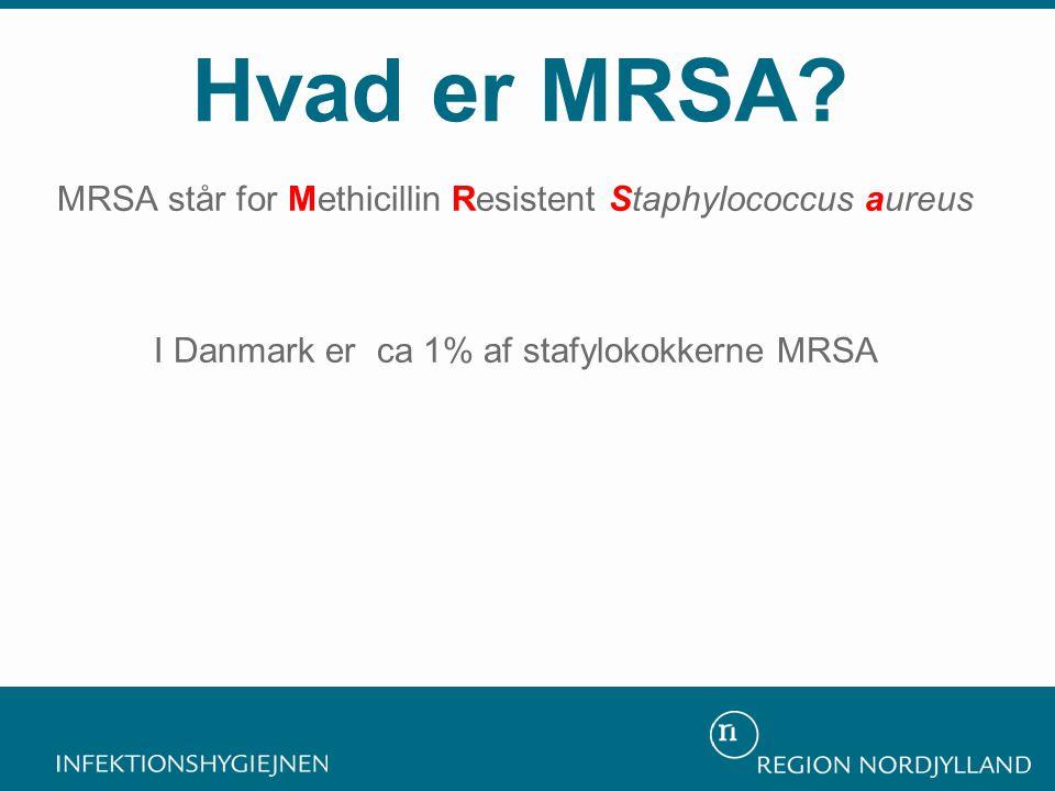 MRSA står for Methicillin Resistent Staphylococcus aureus I Danmark er ca 1% af stafylokokkerne MRSA Hvad er MRSA?