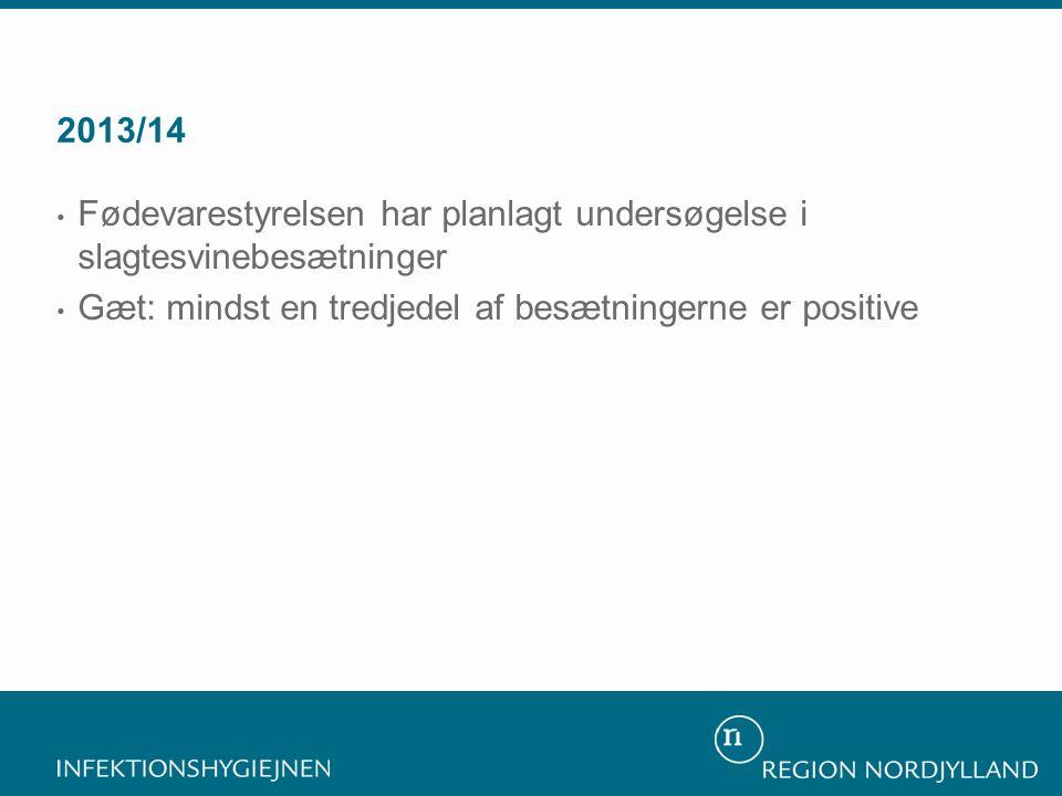 2013/14 • Fødevarestyrelsen har planlagt undersøgelse i slagtesvinebesætninger • Gæt: mindst en tredjedel af besætningerne er positive